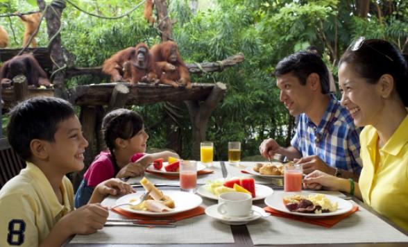 オランウータンと朝食を食べるシンガポール動物園大満喫の午前ツアー アニマルショーとトラムにも乗れる<日本語ガイド/午前半日/朝食付き>