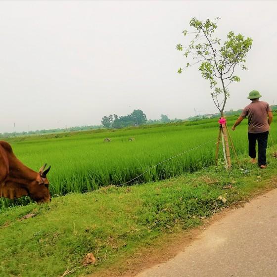 ドゥオンラム村
