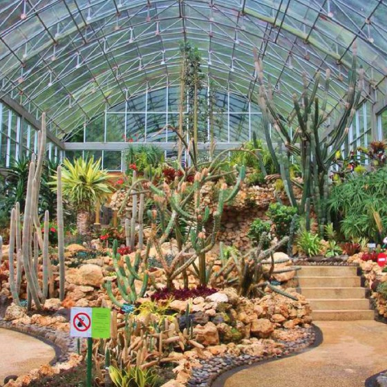 クブンラヤ植物園