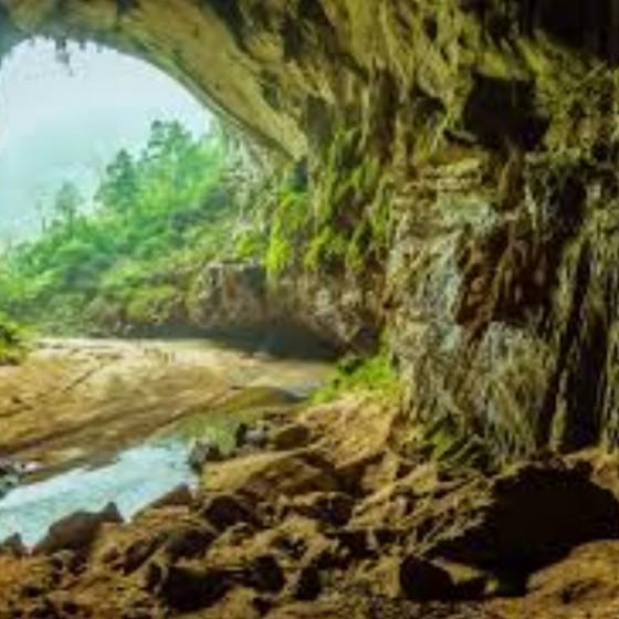 世界遺産フォンニャケバン国立公園観光