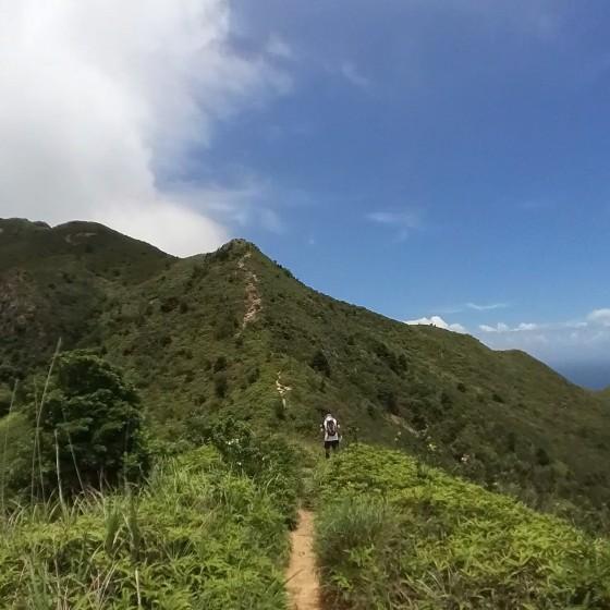 シャープピーク Sharp Peak イメージ