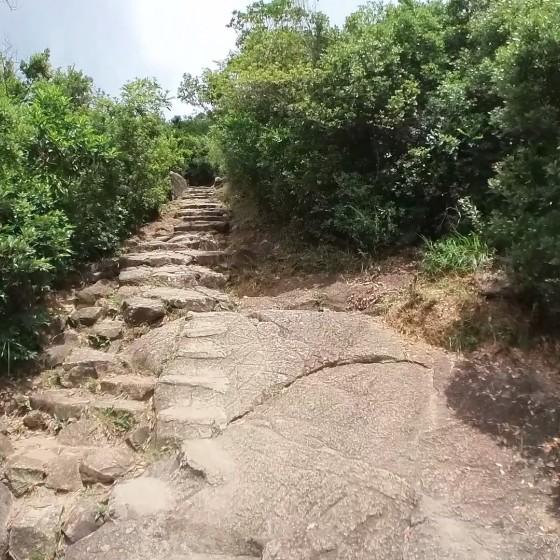 ライオンロックハイキング イメージ