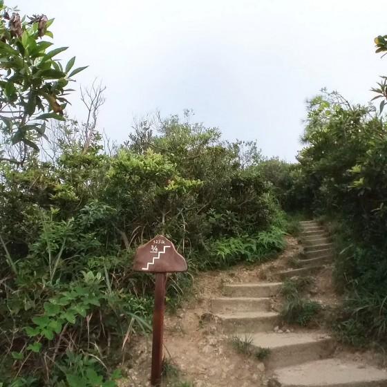 西高山(ハイウェストピーク)への道中 ~ どこまできているかが一目でわかる表示