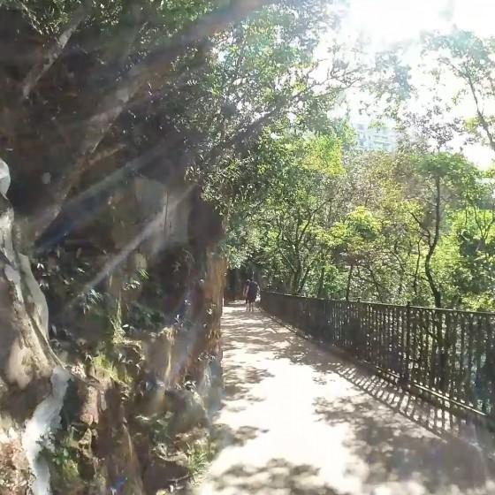 ルガードロード(盧吉道)の遊歩道 イメージ
