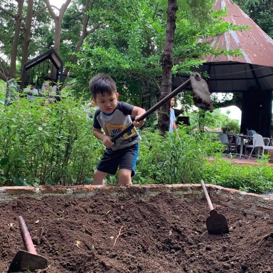 地面を掘る