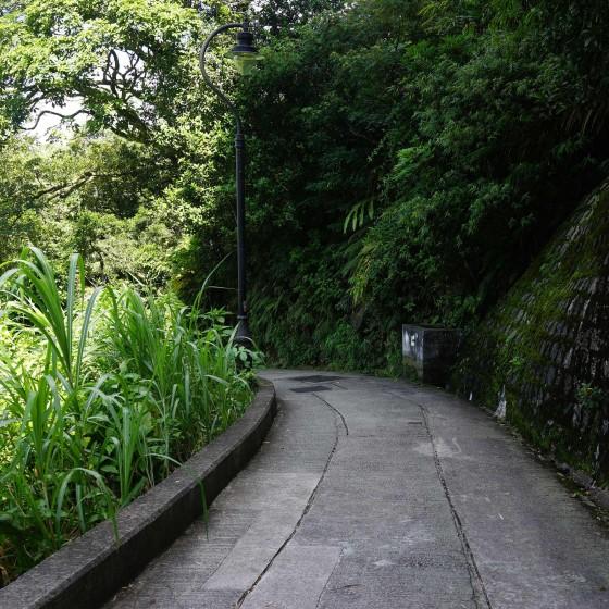 オールドピークロード(舊山頂道) サンプル