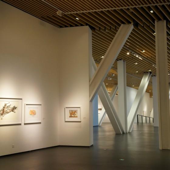 中国国立版画博物館 外観 イメージ ~ 巨大なスペースに優雅に展示される世界からの版画