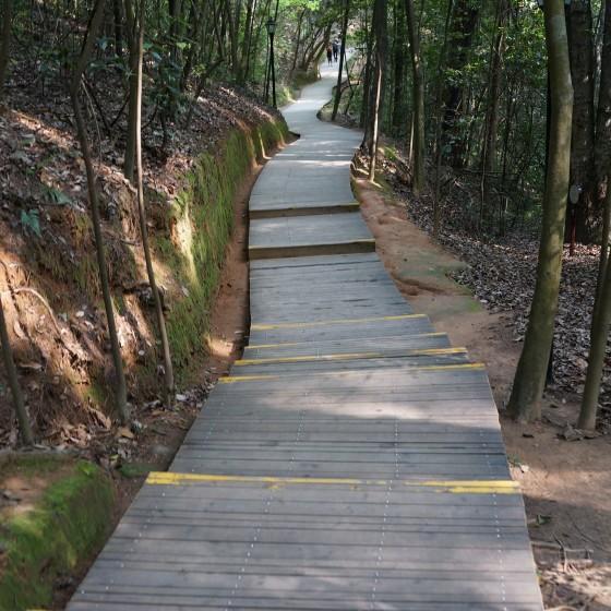 丹霞山 イメージ