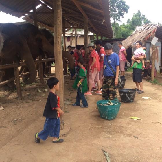 象使い体験+水遊び