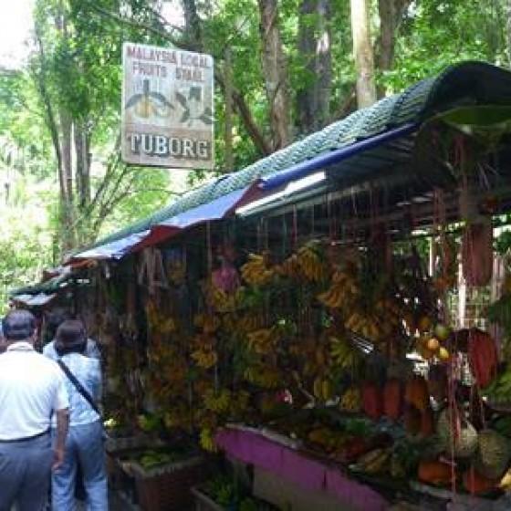 果物を売っている店