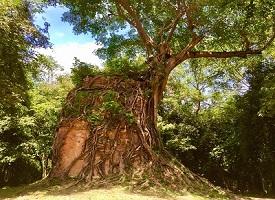 世界遺産②丨サンボ―プレイクック遺跡群の観光