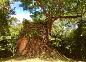 世界遺産①丨サンボ―プレイクック遺跡群