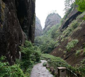 武夷岩茶(烏龍茶)の茶畑と 世界最高級茶葉「大紅袍」の原木を見学