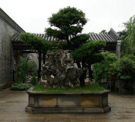 広東四大庭園の一つ「梁園」へご案内