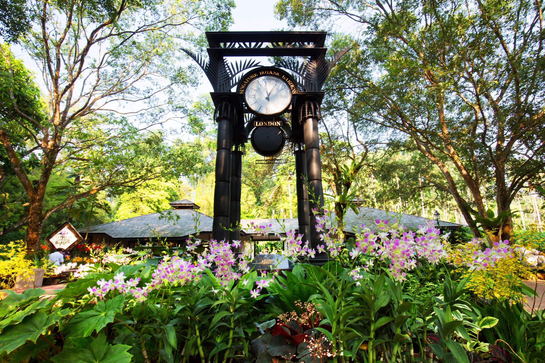 シンガポールで初めての世界遺産「シンガポール植物園」