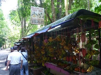 南国フルーツ試食、バリプラウの田舎風景、ローカル市場