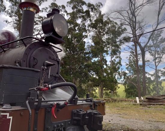 パッフィンビリー蒸気機関車+優雅なワインカントリー<英語ガイド/日本語音声機器/指定ホテル送迎>
