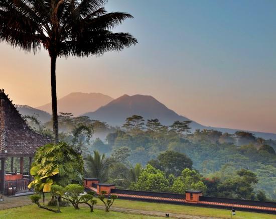 【ジャカルタ発】中部ジャワのコーヒー農園で楽しむ休日2泊3日