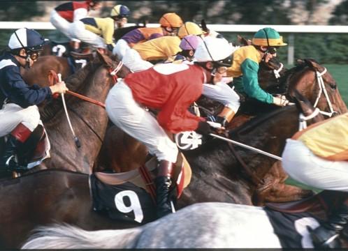 香港 競馬 イメージ