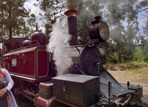 蒸気機関車パッフィンビリー+ヤラバレーワイナリーでドメインシャンドンなど3軒のワイナリー巡りツアー<日本語ガイド/試飲あり/昼食あり/指定ホテル送迎>